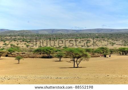 Tanzanian landscape - stock photo