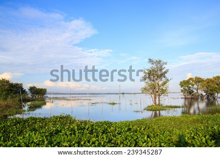 Tapa Lake in Chau Doc city, An Giang, Vietnam. Chaudoc city near Cambodia is famous tourist spots of the Mekong river tours
