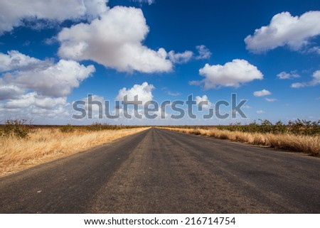 tar road with clouds and grasses - stock photo