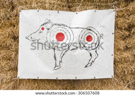 target shooting with a picture of a wild boar - stock photo