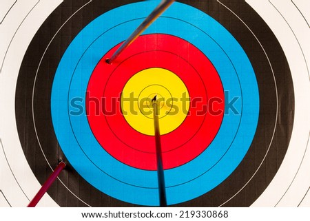 target with arrows planted