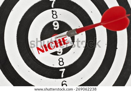 Targeting Niche Concept and a dart in center of target - stock photo