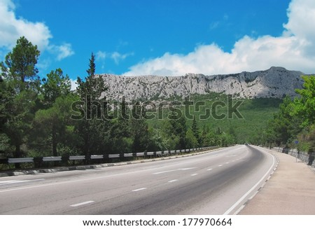 tarmac road leading into the mountains and the forest