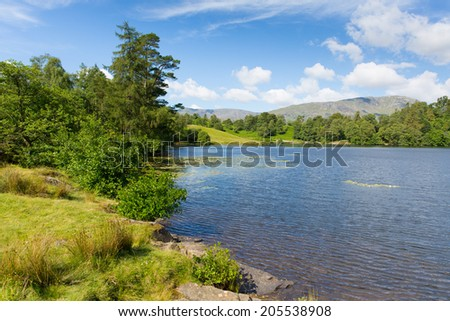 Tarn Hows Lake District National Park England uk between Coniston Water and Windermere on a beautiful sunny summer day popular tourist attraction - stock photo
