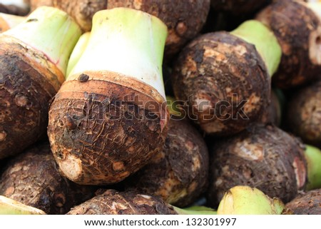 Taro Roots Stock Images, Royalty-Free Images & Vectors ...
