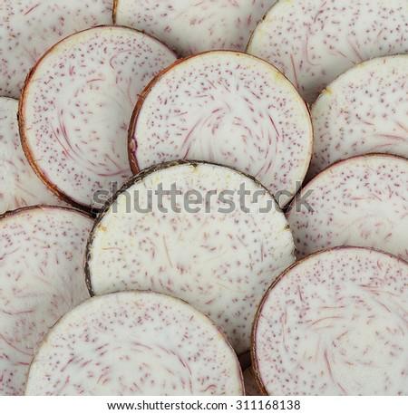 taro isolated on white background. - stock photo