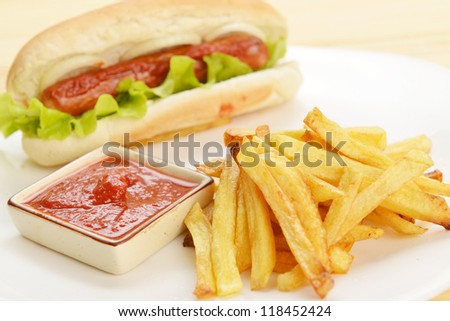 Tasty and appetizing  hot dog with fries on white plate