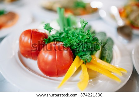 Tasty appetizer. Different vegetables on white plate