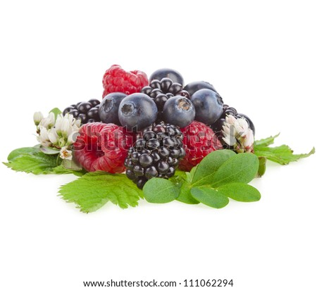tasty berries with flower isolated on a white background - stock photo