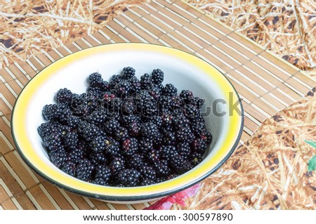 Tasty blackberries in a white bowl on the table - stock photo