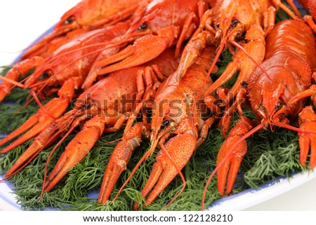 Tasty boiled crayfishes with fennel on plate close-up - stock photo
