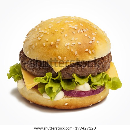 Tasty burger with cheese, red onion and lettuce