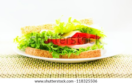 tasty delicious sandwich on a plate