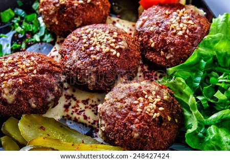 Tasty felafels meal with greens and pickles - stock photo
