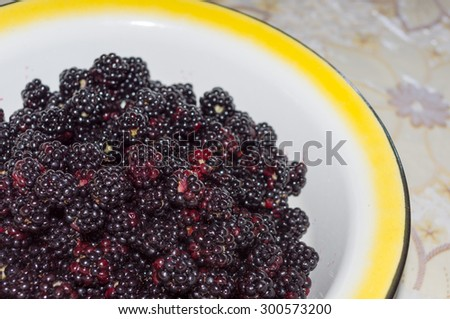 Tasty fresh blackberries in a bowl on the table - stock photo