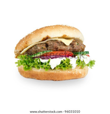 Tasty Hamburger over white