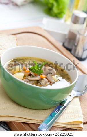tasty home made mushroom soup - stock photo