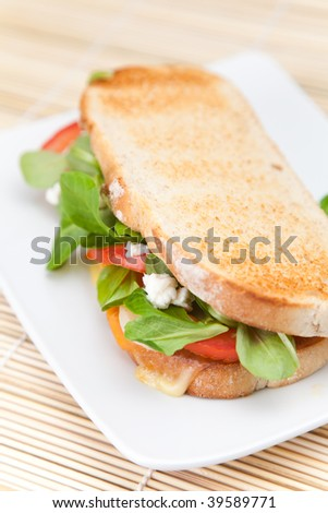 tasty lamb tomato onion and cheese sandwich