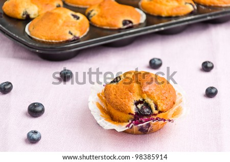 tasty muffin with blueberry at a purple serviette - stock photo