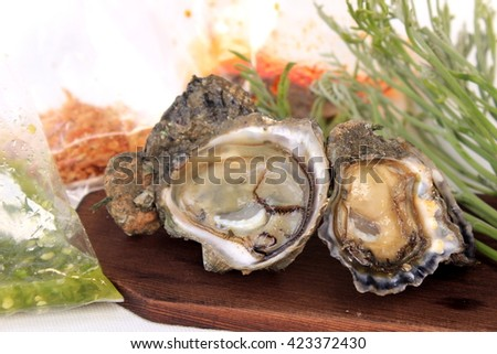 Tasty Oyster Sauce Dip. White Background. - stock photo