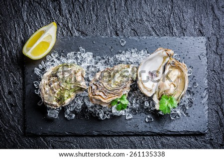 Tasty oysters on crushed ice - stock photo