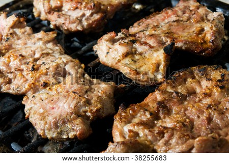 Tasty pork meat on the barbecue - stock photo