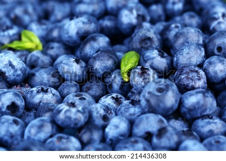 Tasty ripe blueberries, close up - stock photo