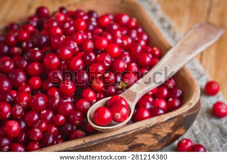 Tasty ripe cranberries - stock photo