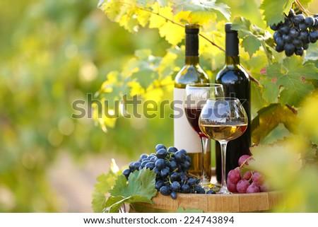 Tasty wine on wooden barrel on grape plantation background - stock photo