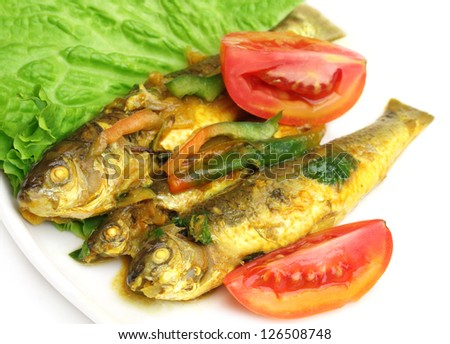 Tatkini fish curry of Indian subcontinent - stock photo