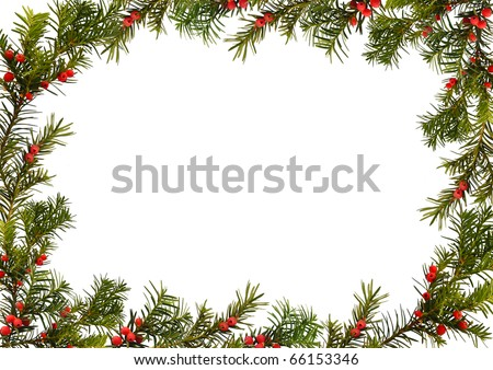 taxus - Christmas frame isolated on the white, background for your text - stock photo