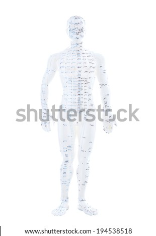 TCM and acupuncture points on a white figure