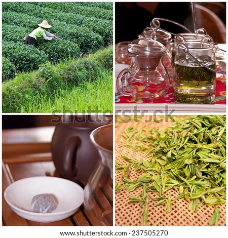 Tea culture and degustation concept collage