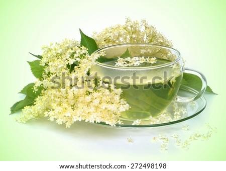 tea elder flower  - stock photo