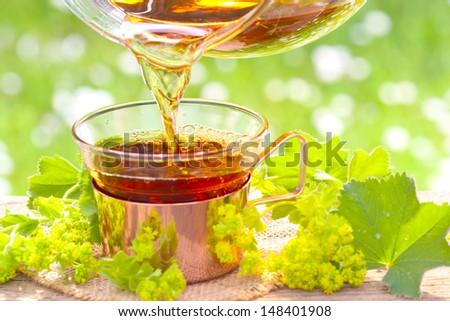 Tea for women - stock photo