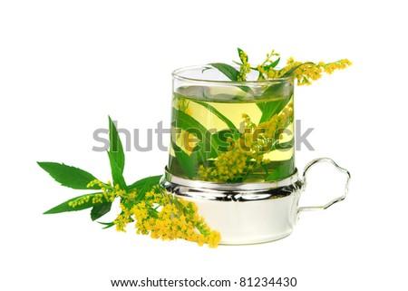 Green Solidago