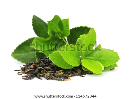 Tea leaves on a white background - stock photo