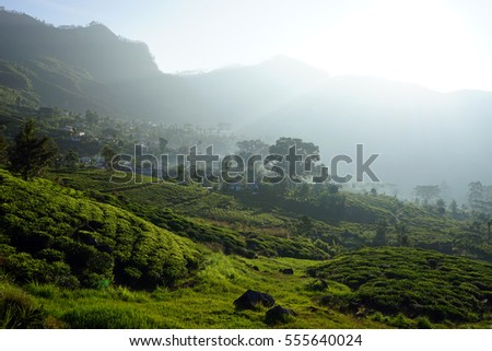 Tea plantation and village on the hills in Sri Lanka