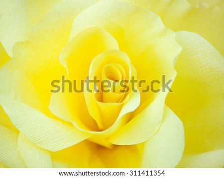 Tea rose petals background - stock photo