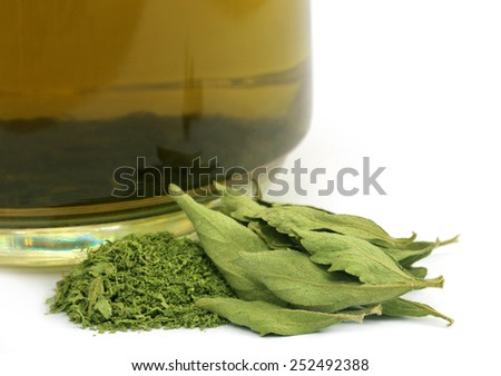 Tea with dired Stevia leaves over white background - stock photo