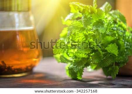 Tea with green fresh melissa leaves close up - stock photo