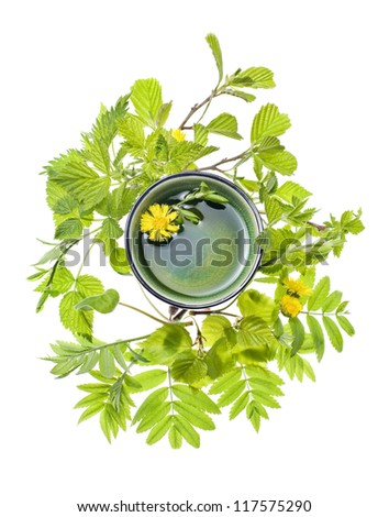 teabowl with bath oil and plants - stock photo