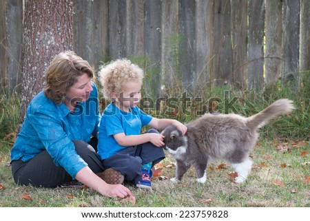Teaching kindness to animals is an important parental lesson. Here, a mother watches as her young son tenderly pets their cat who rewards him with a head bump.  - stock photo