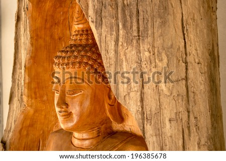 Teak Buddha ,people in lamphun made and place infornt of the forest to protect the forest - stock photo