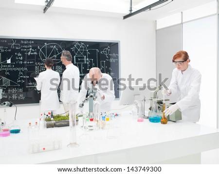 Essays on dna testing