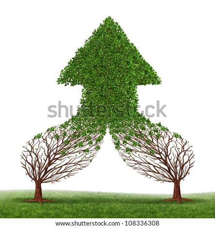 Teamwork Success and working together as a business symbol and financial merger concept with two trees connecting and merging as one forming a healthy growing arrow shaped tree as an icon of growth. - stock photo