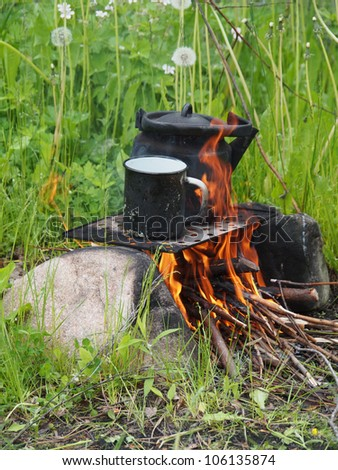 Teapot and kettle on a fire in the summer - stock photo
