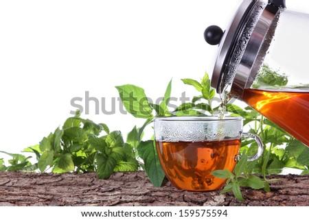 Teapot with fresh tea and herbs - stock photo