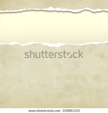 Tear paper on abstract  background. Raster version of the loaded vector - stock photo