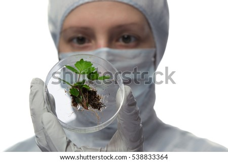technician holding a test tube with the plant and the ground